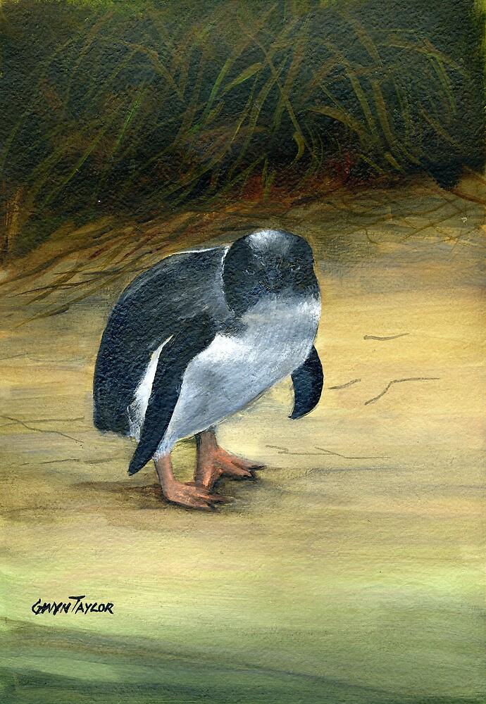 Fairy Penguin by gwyntay