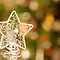 Christmas Stars ~ Peace Love & Tranquility