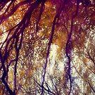 Autumnally by Anna Creedon
