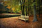Sit Down And Enjoy by AnnieSnel