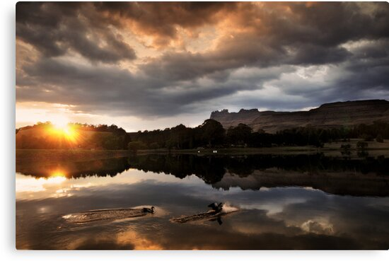 Dawn landing by Sharon Bishop