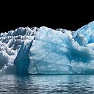 Two Ringed-Billed Gulls On An Iceberg by Alex Preiss