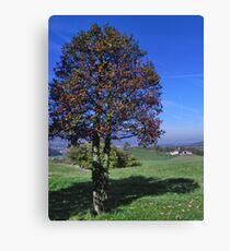 Holly Tree Canvas Print