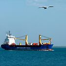 sea, ship, seagull and sky by SUBI