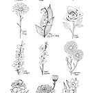 Birth Flowers / Black and White Ink Flowers / Botanical Drawing / Birthday Flowers by Laura Maxwell