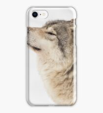 Timber wolf in winter iPhone Case/Skin