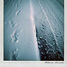 Snow Polaroïd by laurentlesax