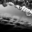 Black and White Vortex by Kana Photography