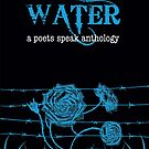Water book cover from a poets speak anthology  by Jules Nyquist