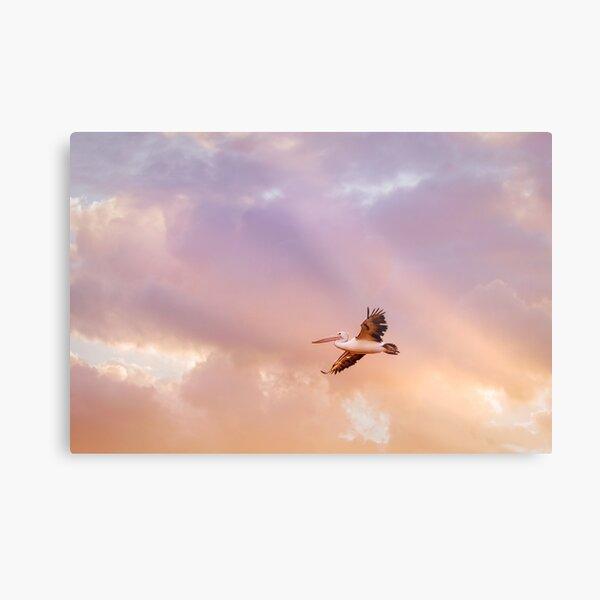 Pelican 1032 Metal Print