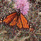 Stylized Butterfly on Pink Flower by BigAl3D