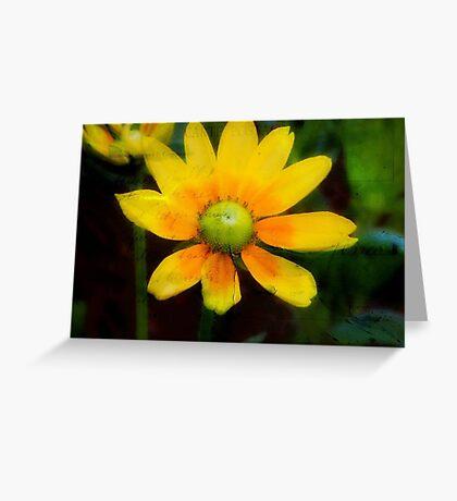 Yellow Petals!!! © Greeting Card