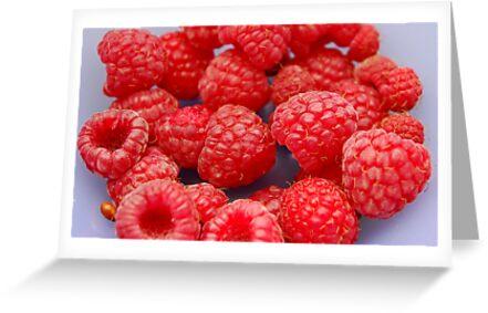 Raspberries by vbk70