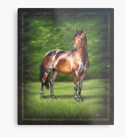 Equus Perfection Metal Print
