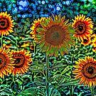 Sunflower Vibrance von Londonimages