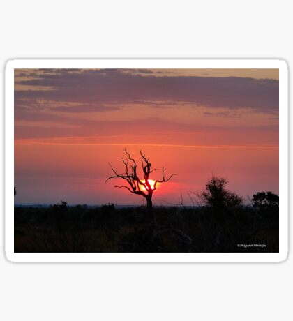SATARA SUNSET IN THE KRUGER NATIONAL PARK Sticker