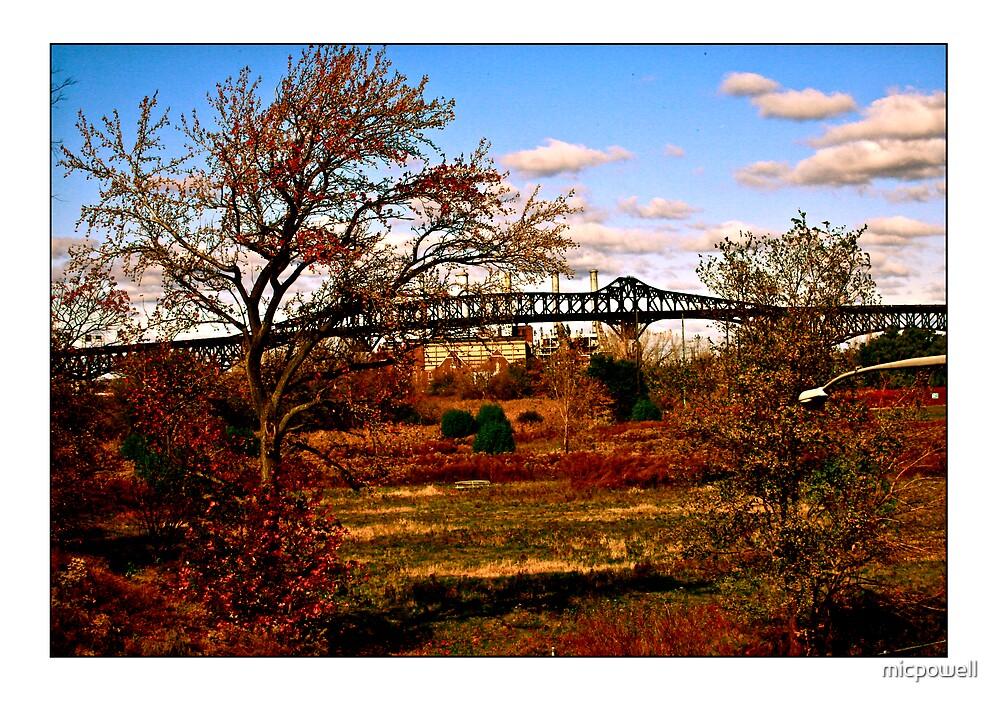 The Pulaski & Meadowland by micpowell