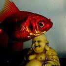Ampzualia's fish  ,  the magic one  . by twistwashere