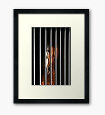 Arrested Soul Framed Print