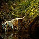 Tiger Pool by Brian Tarr