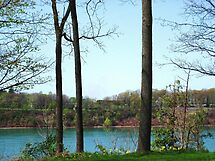 The Niagara River At Lewiston, NY by artwhiz47