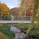 Autumn at Brough Beck Footbridge by Lindamell