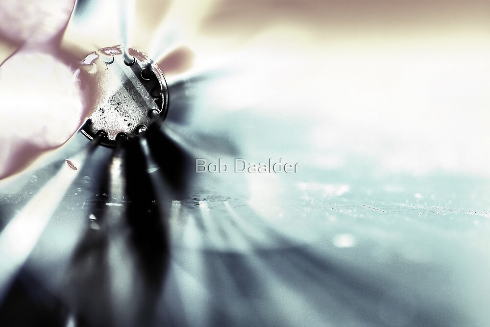 Another whisk by Bob Daalder