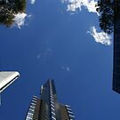 Reach For The Sky by David McMahon