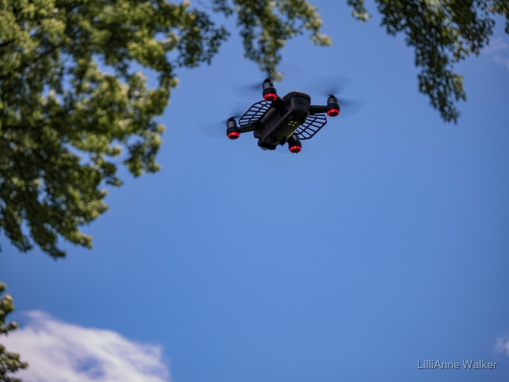 Drone in the Park #1 by lillijy97