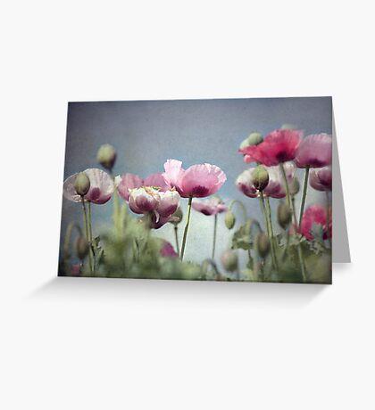 ~ Painted Ladies ~ Greeting Card