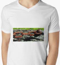 The Farm Gate Chain T-Shirt