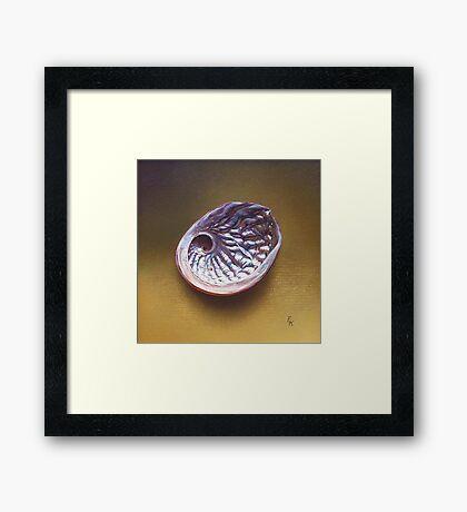 Abalone shell #1 Framed Print