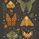 Autumn Moths by latheandquill