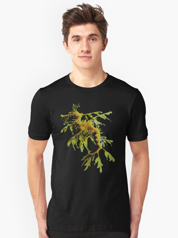 Leafy Sea Dragon by Dive Seven .