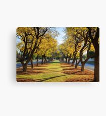 Wentworth Streetscape Canvas Print