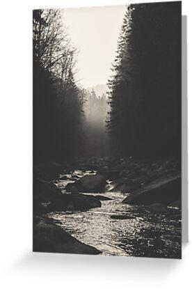 Morning river by Tomáš Hudolin