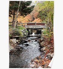 Autumn Brook in New England Poster
