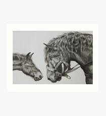 Horse with Foal Art Print
