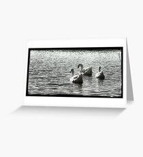The Three Muskateers  Greeting Card