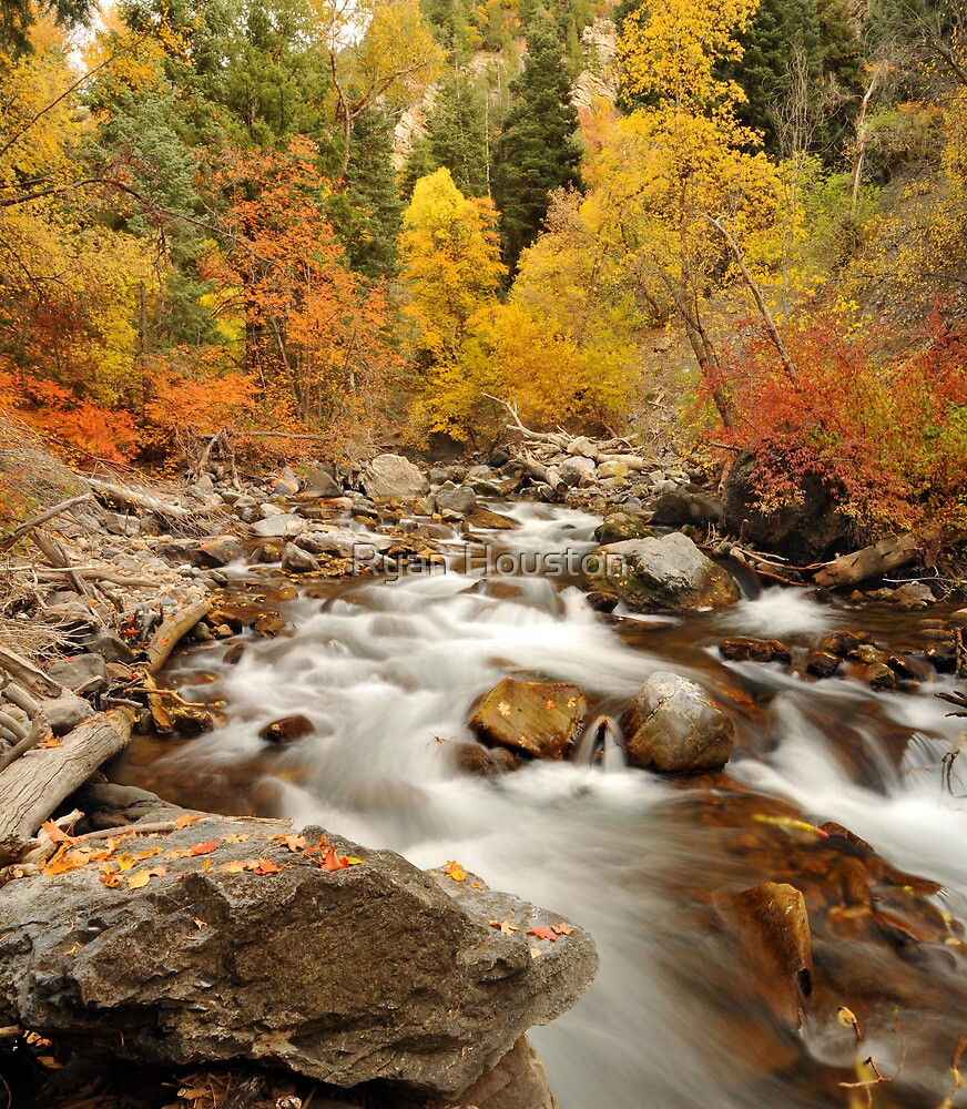 American Fork River - Fall Currents by Ryan Houston