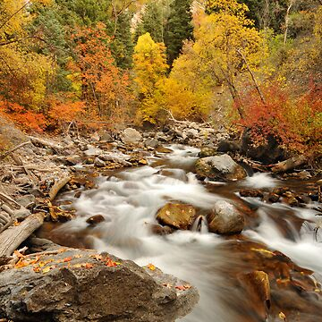 American Fork River - Fall Currents by photoforyou