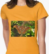 Atlas Moth Womens Fitted T-Shirt