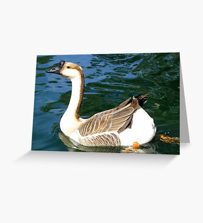 Chinese Goose ~ Male Greeting Card