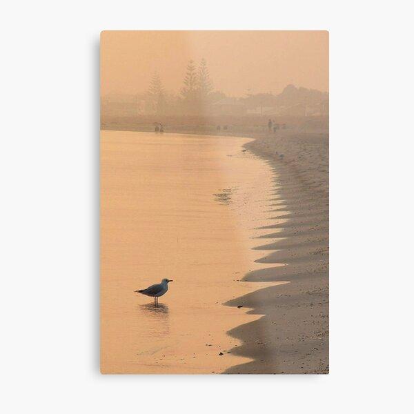Misty Morning on Busselton Beach Metal Print