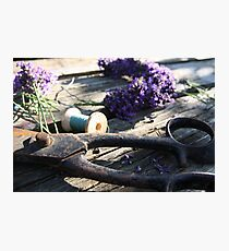 Summer Crafts Photographic Print