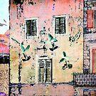 The Essence of Croatia - White Doves in Dubrovnik by Igor Shrayer