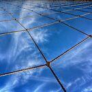 Web Of Skies by Bob Larson