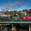 "Steam Loco ""Repton"" at Ruswarp Bridge by Dave Hudspeth"