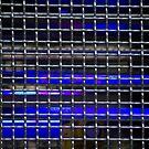Blue Light by Lynn Wiles