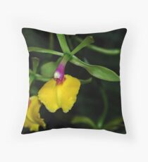 Epidendrum Orchid Throw Pillow